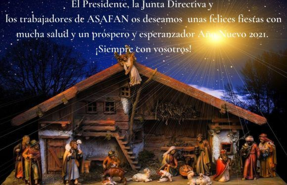 Merry Christmas and a Happy New Year 2021!