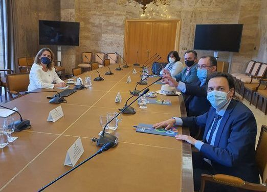 Meeting with the minister to request the maintenance of the social bonus for large families